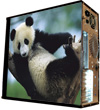 Обои наклейка на корпус компьютера midi tower   Giant Panda 48Х43см  глянц
